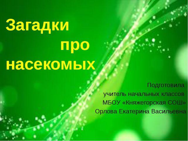 Загадки про насекомых Подготовила учитель начальных классов МБОУ «Княжегорска...