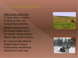 Сергей Есенин Нивы сжаты, рощи голы, От воды туман и сырость. Колесом за сини