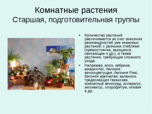 Комнатные растения Старшая, подготовительная группы Количество растений увели
