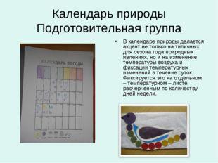 Календарь природы Подготовительная группа В календаре природы делается акцент