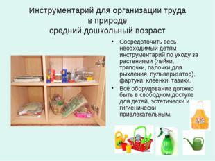 Инструментарий для организации труда в природе средний дошкольный возраст Сос
