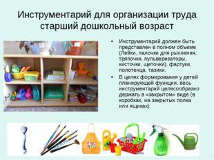 Инструментарий для организации труда старший дошкольный возраст Инструментари