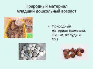 Природный материал младший дошкольный возраст Природный материал (камешки, ши