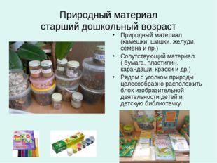 Природный материал старший дошкольный возраст Природный материал (камешки, ши