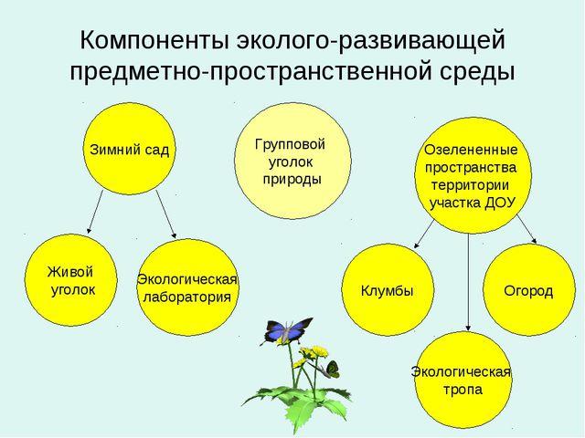 Компоненты эколого-развивающей предметно-пространственной среды Групповой уго...