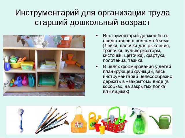 Инструментарий для организации труда старший дошкольный возраст Инструментари...