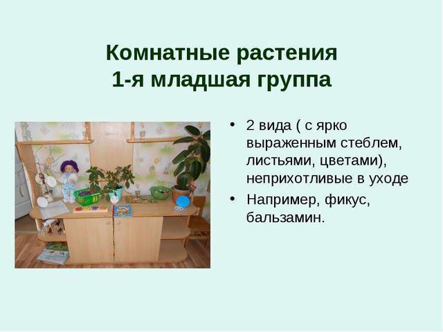 Комнатные растения 1-я младшая группа 2 вида ( с ярко выраженным стеблем, лис...