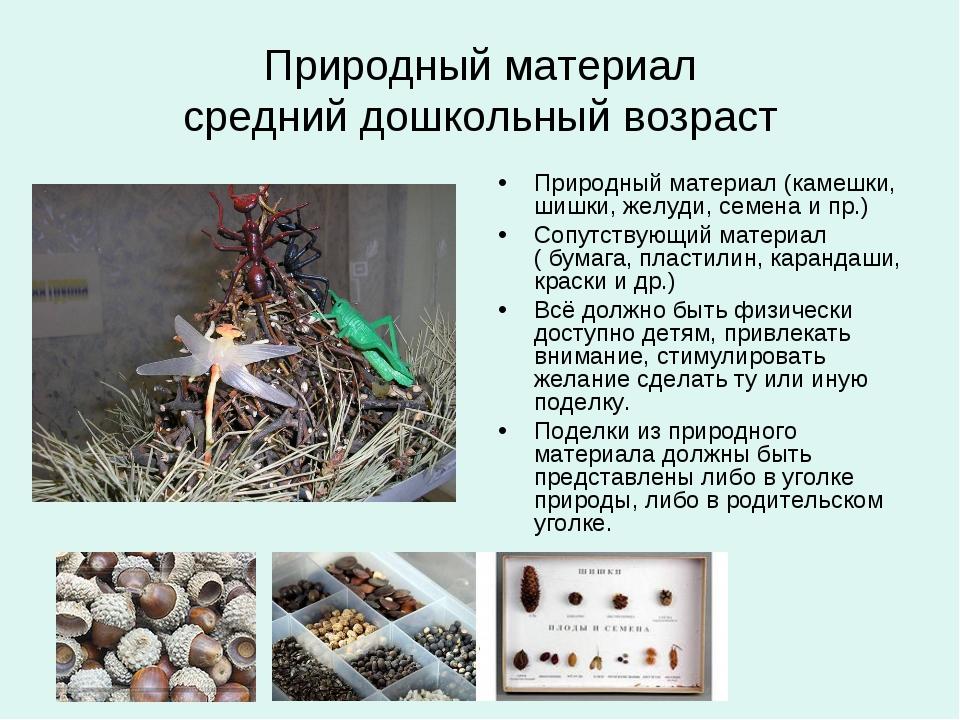 Природный материал средний дошкольный возраст Природный материал (камешки, ши...