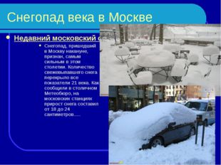 Снегопад века в Москве Недавний московский снегопад признали самым сильным в