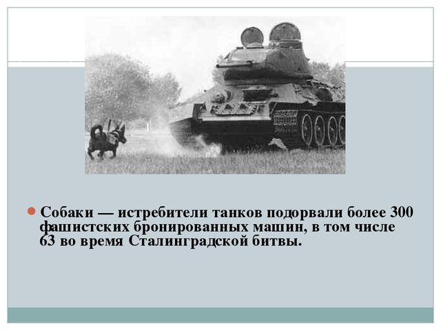 Собаки — истребители танков подорвали более 300 фашистских бронированных маш...