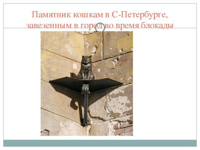 Памятник кошкам в С-Петербурге, завезенным в город во время блокады