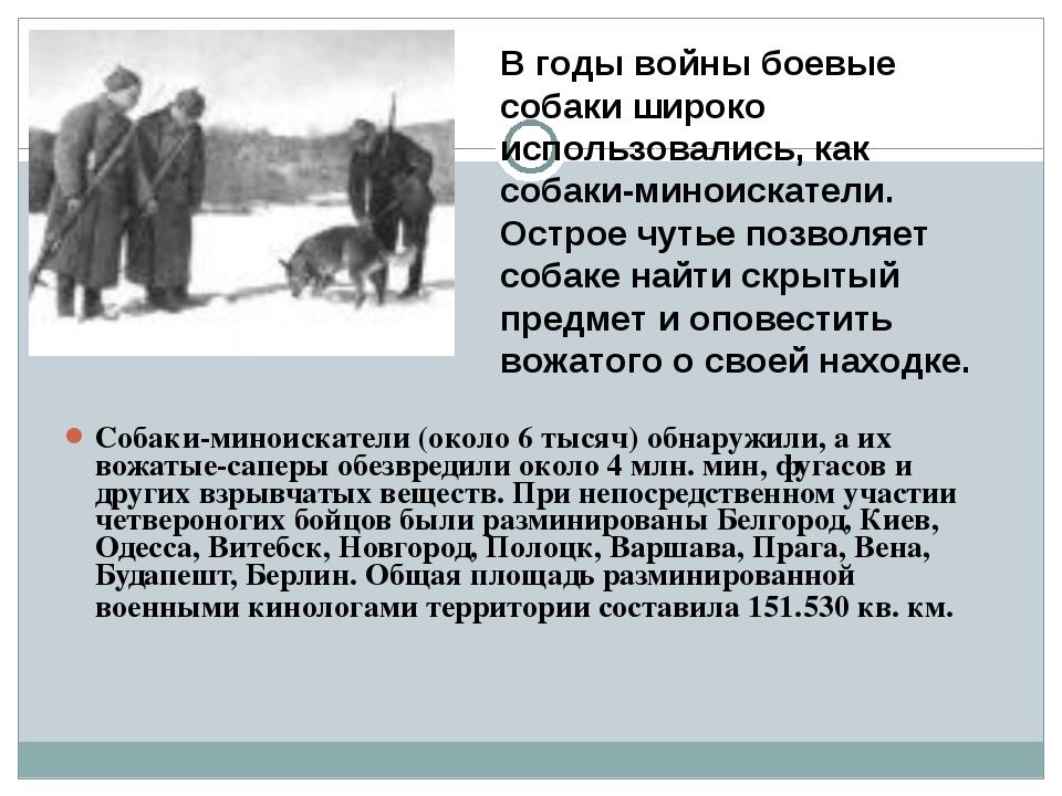 Собаки-миноискатели (около 6 тысяч) обнаружили, а их вожатые-саперы обе...