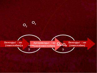? Веноздық қан (гемоглобин) О2 ? Артериалдық қан (оксигемоглобин) Веноздық қ
