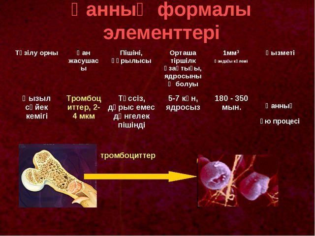 Қанның формалы элементтері тромбоциттер Түзілу орныҚан жасушасыПішіні, құры...