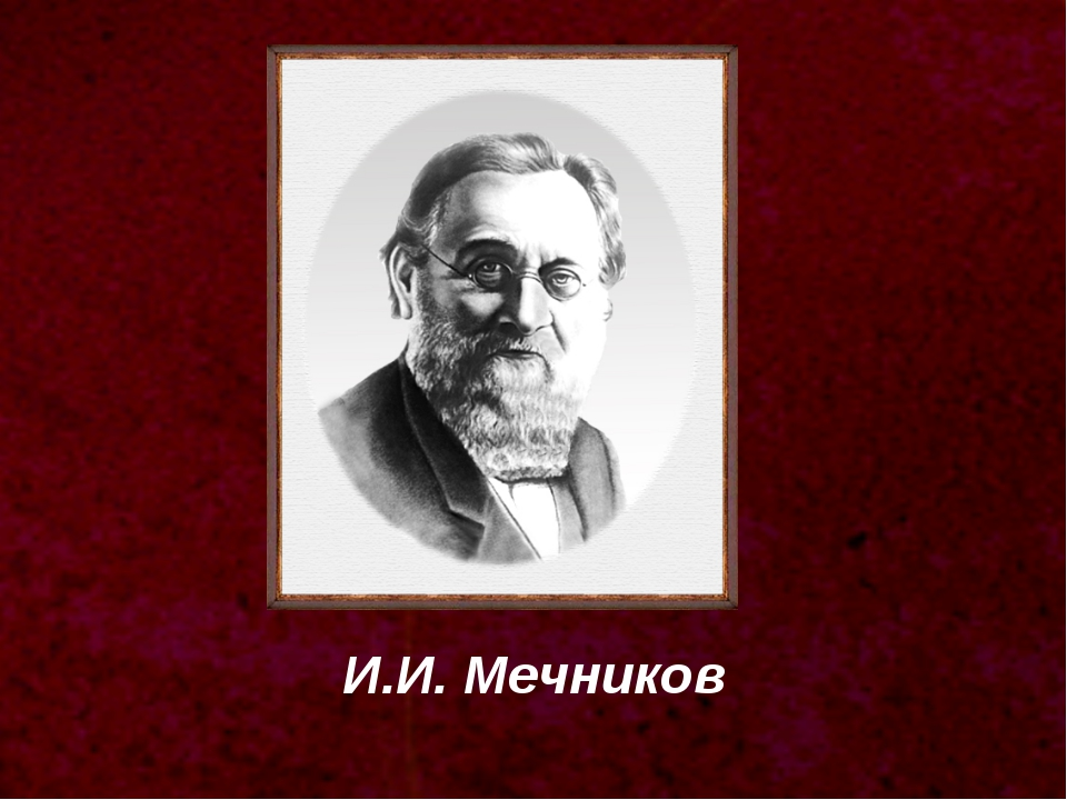 И.И. Мечников
