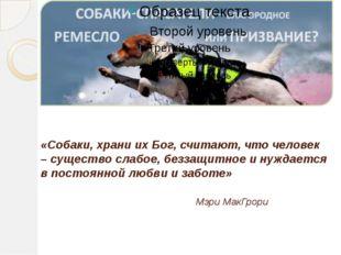 «Собаки, храни их Бог, считают, что человек – существо слабое, беззащитное и