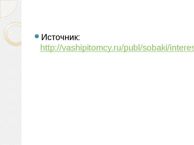 Источник: http://vashipitomcy.ru/publ/sobaki/interesnoe/sobaki_spasateli_pos...
