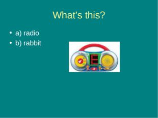 What's this? a) radio b) rabbit