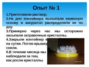 Опыт № 1 1.Приготовили раствор. 2.На дно контейнера высыпали каменную основу