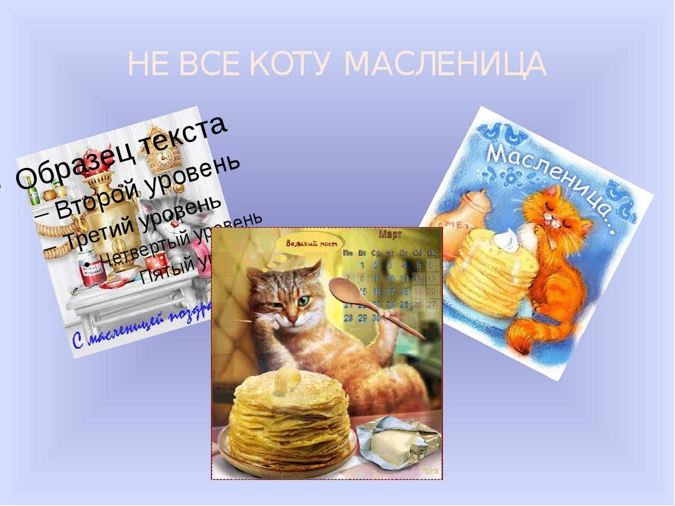 НЕ ВСЕ КОТУ МАСЛЕНИЦА Поговорка « Не все коту масленица!