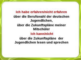 Ich habe erfahren/nicht erfahren über die Berufswahl der deutschen Jugendlic