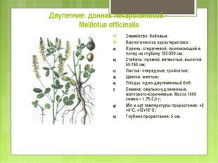Двулетние: донник лекарственный - Melilotus officinalis Семейство: бобовые Би