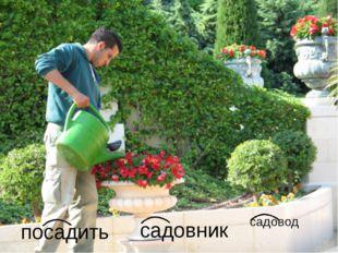 садовник садовод посадить
