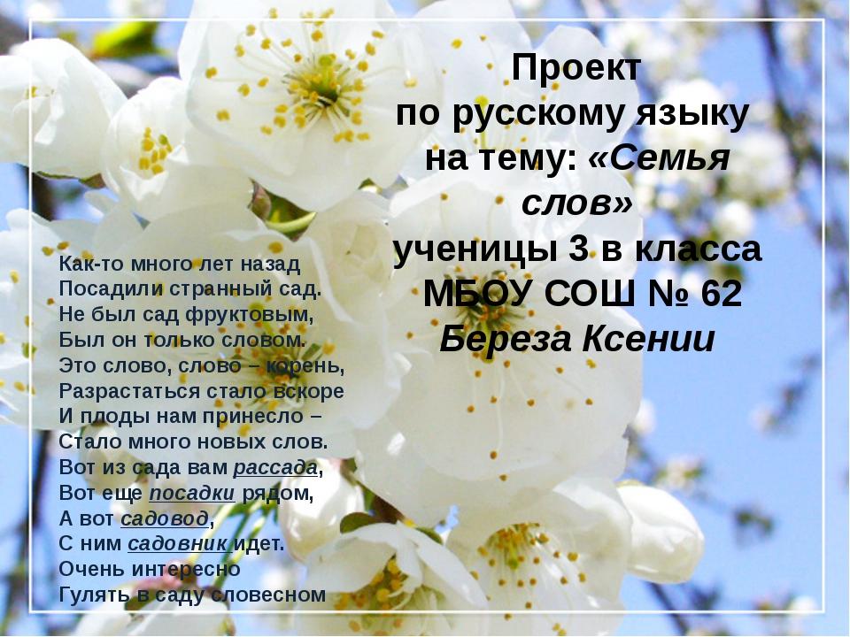 Проект по русскому языку на тему: «Семья слов» ученицы 3 в класса МБОУ СОШ №...