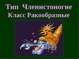 Тип Членистоногие Класс Ракообразные