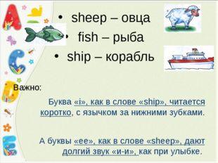 sheep – овца fish – рыба ship – корабль Важно: Буква «i», как в слове «ship»,
