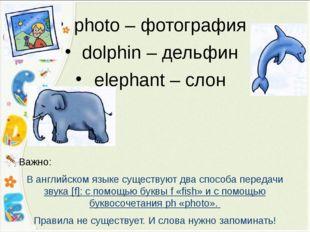 photo – фотография dolphin – дельфин elephant – слон Важно: В английском язык