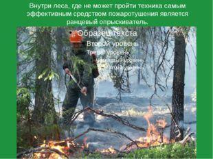 Внутри леса, где не может пройти техника самым эффективным средством пожароту