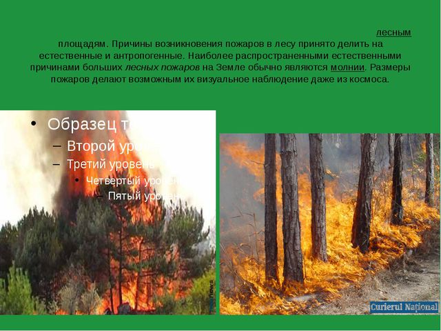 Лесно́й пожа́р— это стихийное, неуправляемое распространение огня по лесным...