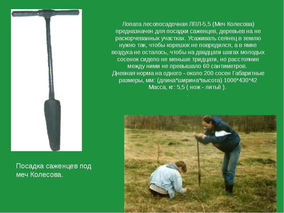 Лопата лесопосадочная ЛПЛ-5,5 (Меч Колесова) предназначен для посадки саженце...