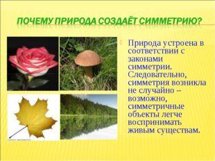 Природа устроена в соответствии с законами симметрии. Следовательно, симметри