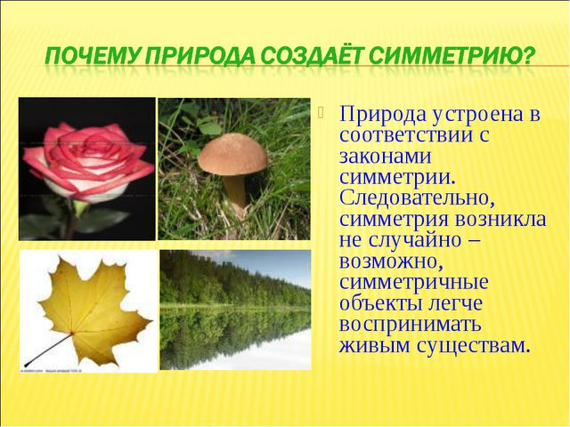 Природа устроена в соответствии с законами симметрии. Следовательно, симметри...