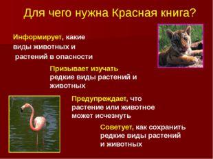 Для чего нужна Красная книга? Информирует, какие виды животных и растений в о