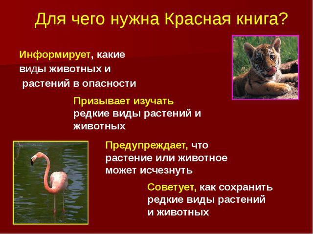 Для чего нужна Красная книга? Информирует, какие виды животных и растений в о...