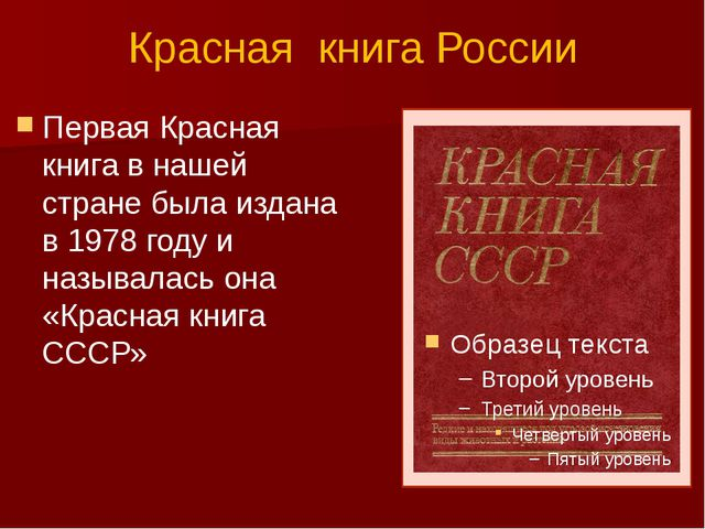 Красная книга России Первая Красная книга в нашей стране была издана в 1978 г...