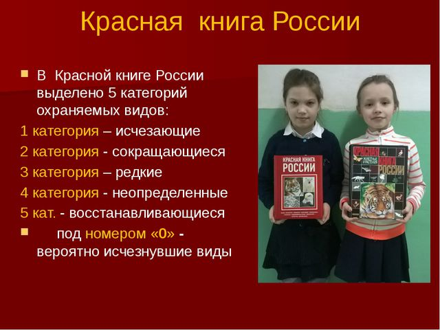Красная книга России В Красной книге России выделено 5 категорий охраняемых в...