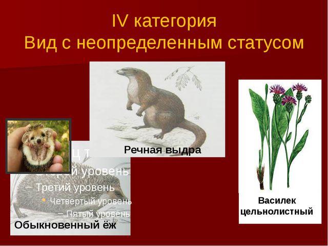 IV категория Вид с неопределенным статусом Обыкновенный ёж Речная выдра Васи...
