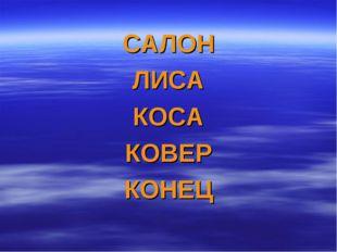 САЛОН ЛИСА КОСА КОВЕР КОНЕЦ