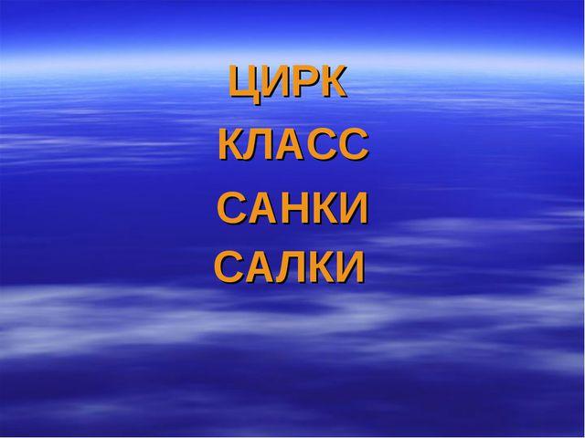 ЦИРК КЛАСС САНКИ САЛКИ