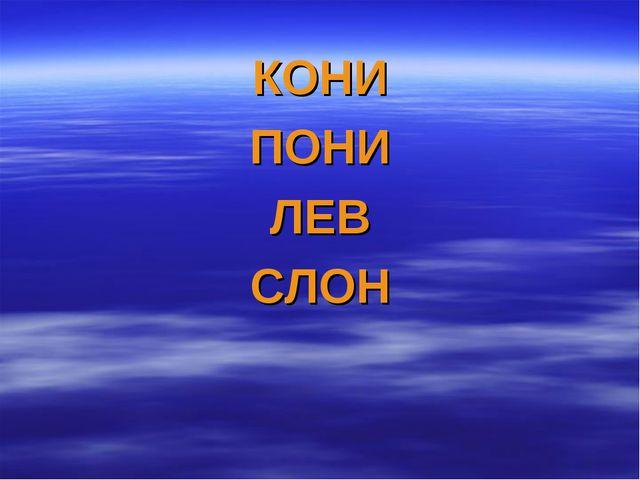 КОНИ ПОНИ ЛЕВ СЛОН