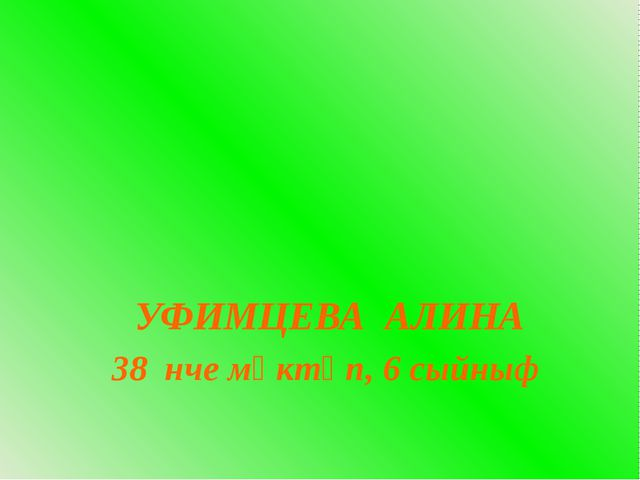 УФИМЦЕВА АЛИНА 38 нче мәктәп, 6 сыйныф