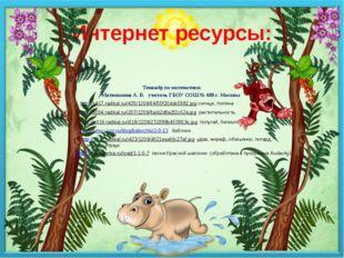 Интернет ресурсы: Тенажёр по математики. Матюшкина А. В. учитель ГБОУ СОШ № 6