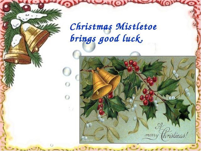 Christmas Mistletoe brings good luck.