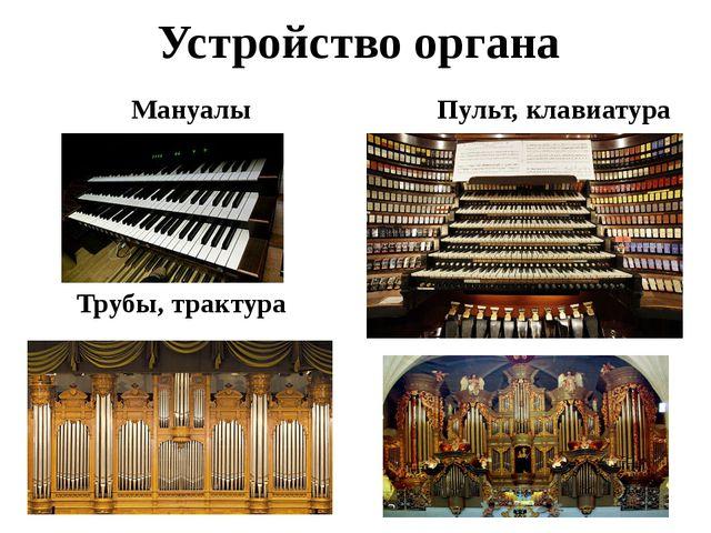 Устройство органа Мануалы Пульт, клавиатура Трубы, трактура