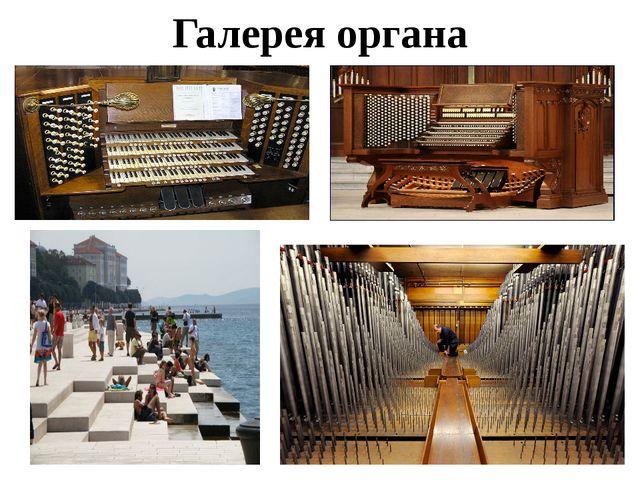Галерея органа