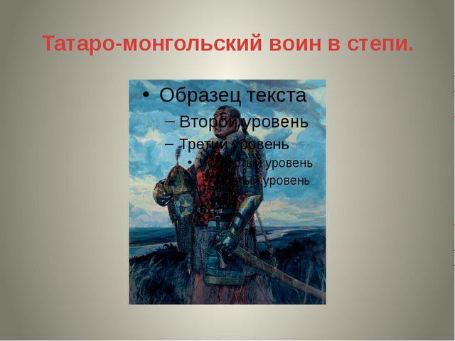Татаро-монгольский воин в степи.